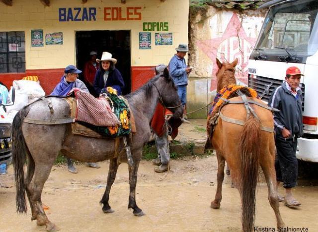 ...on horses,