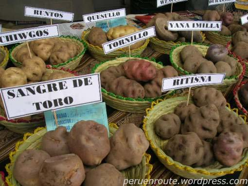 pictures of potatoes in cusco