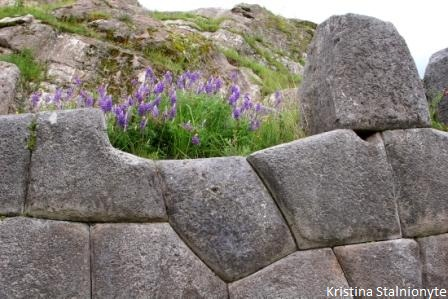 Suchuna: retaining wall